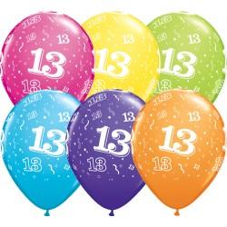 Numéro 13