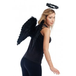 Ailes d'ange noires